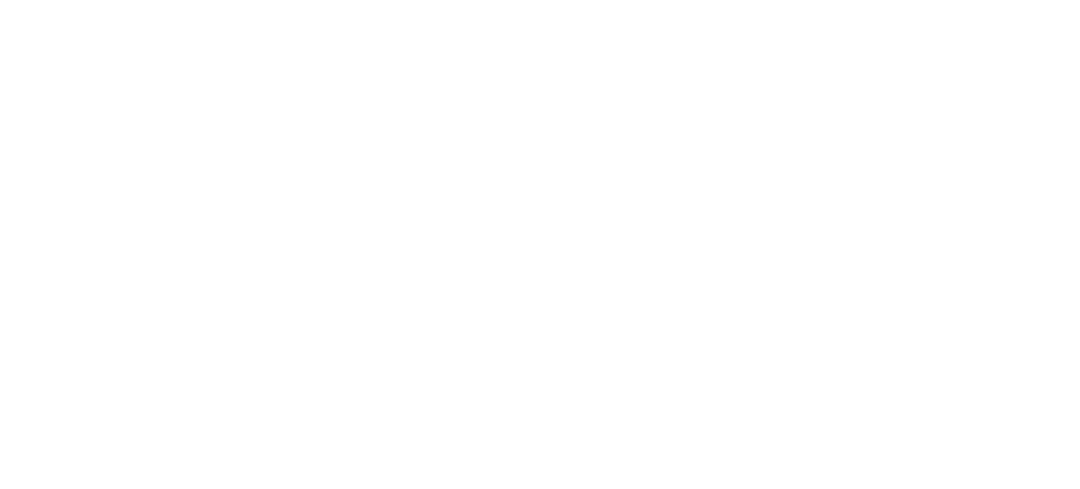 Brick Pizza